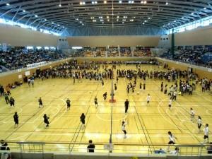 AMGバレーボール大会の写真