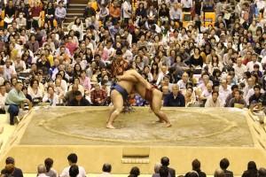 第二回大相撲さいたま場所の写真2