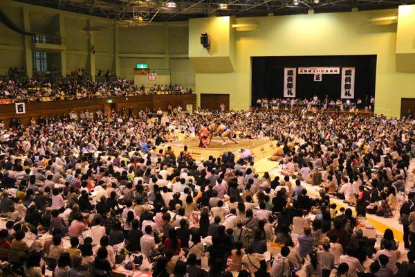 第三回大相撲さいたま場所が開催されました!