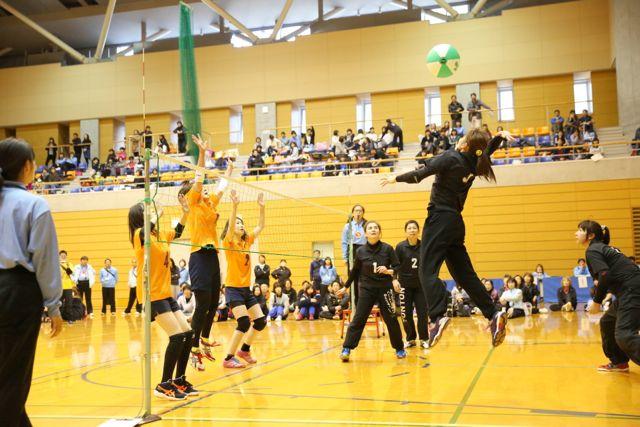 第23回ジャパンカップビーチボール選手権埼玉大会の写真2